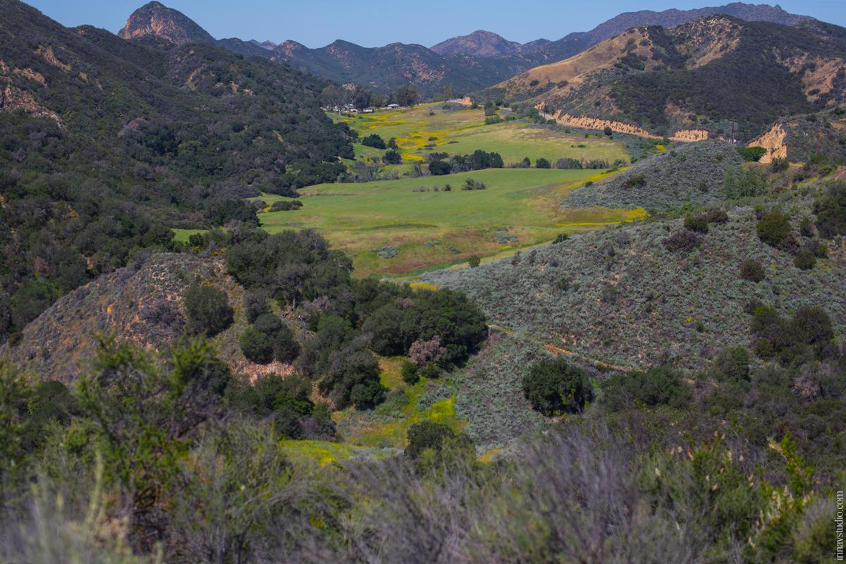 Malibu-Canyon